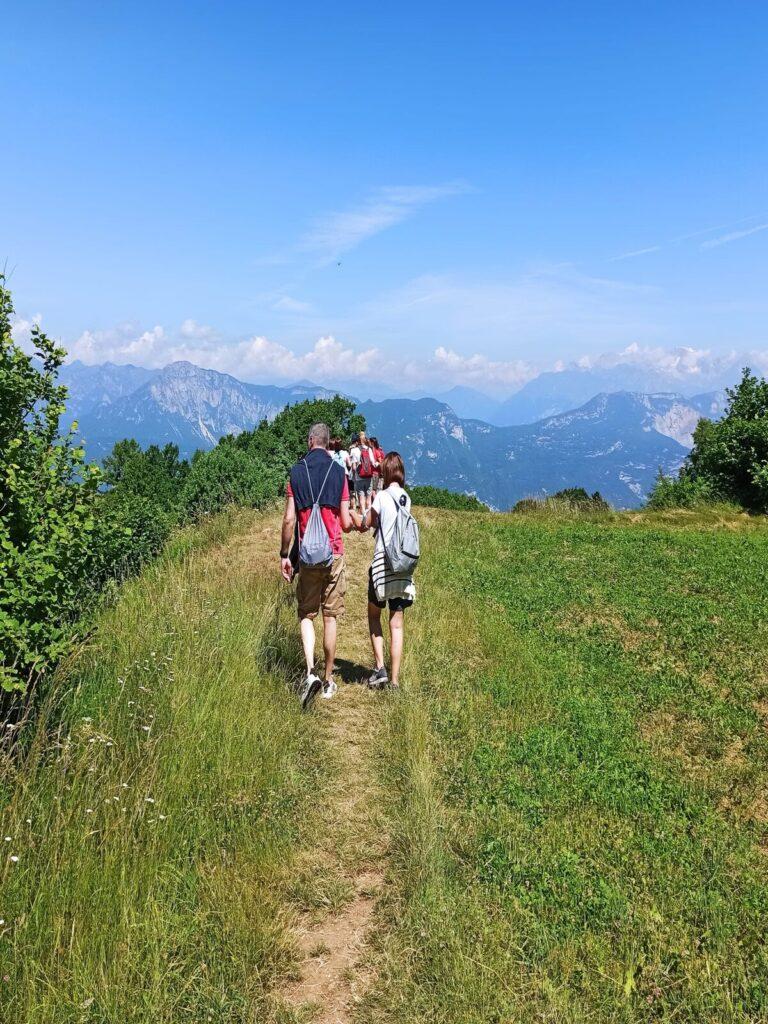 Trekking sul Monte Creino: alla scoperta dei profumi del bosco